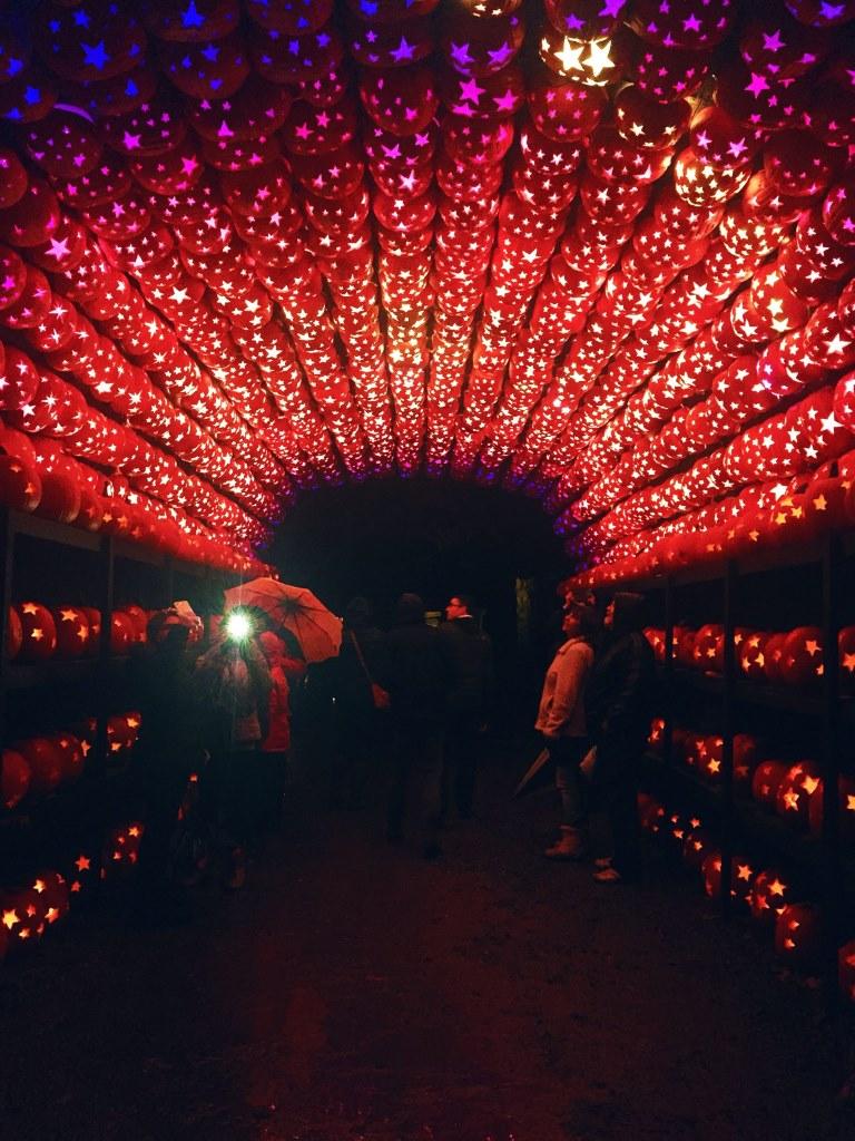 Halloween in NYC, Jack O Lantern Blaze