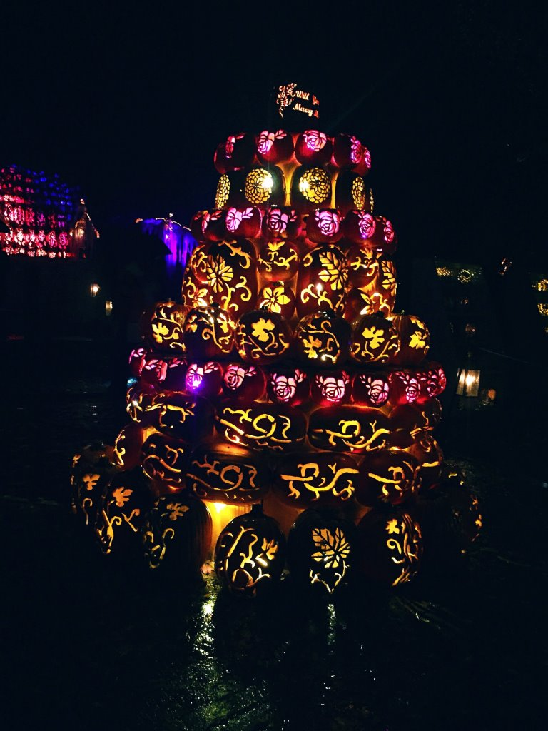 Glowing pumpkins at Sleepy Hollow for Halloween